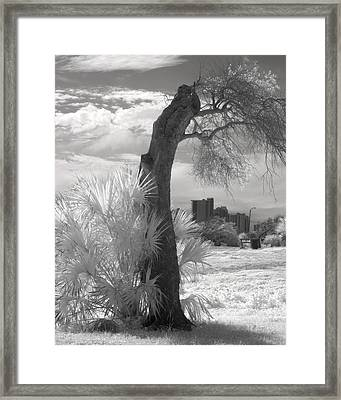 After The Storm Framed Print by Fred Baird