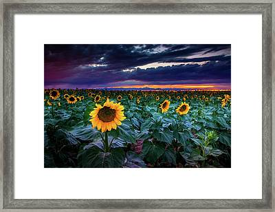 After The Storm Framed Print by John De Bord