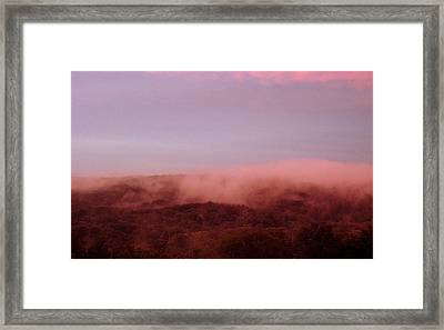 After The Storm Framed Print by Marcia Crispino