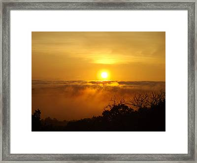 After The Storm Framed Print by Rebecca Cearley