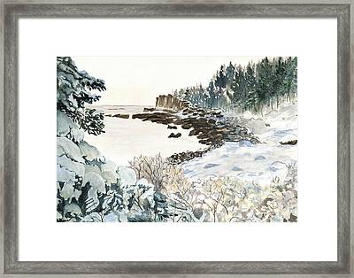 After The Winter Nor'easter Framed Print by Carol Helene