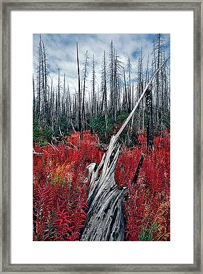 Afterburn Framed Print