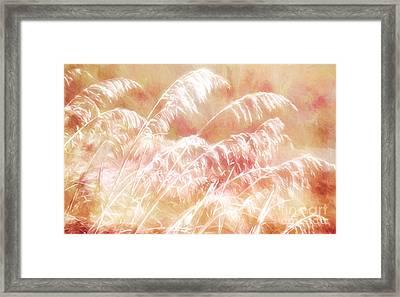 Afterglow II Framed Print by Dan Carmichael