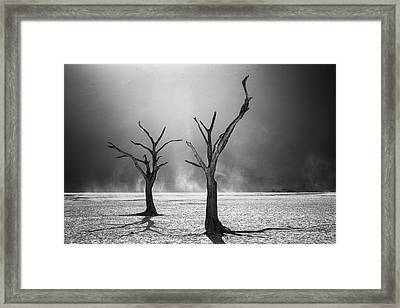 Afterlife Framed Print by Fegari