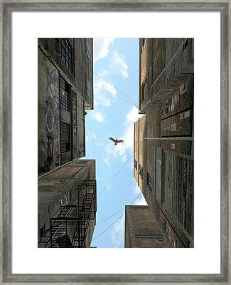 Afternoon Alley Framed Print
