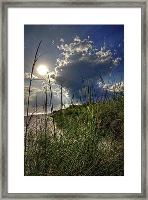 Afternoon At A Sanibel Dune Framed Print