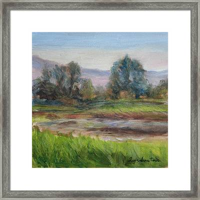 Afternoon At Sauvie Island Wildlife Viewpoint Framed Print