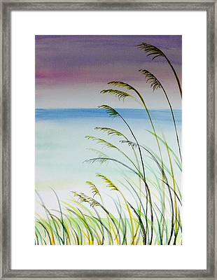 Afternoon At The Beach Framed Print by Hae Kim