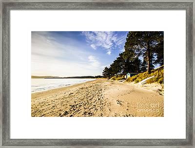 Afternoon Beach Landscape  Framed Print