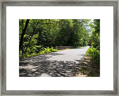 Afternoon Delight Framed Print by Laurie Breton