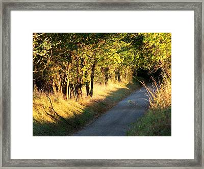 Afternoon Delight Framed Print by Michael L Kimble