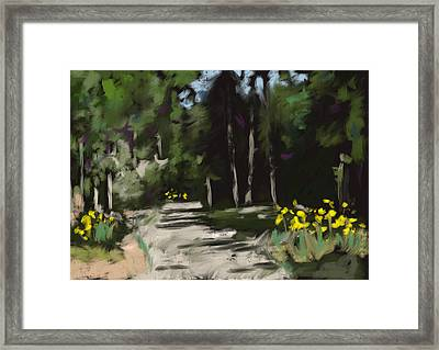 Afternoon In North Florida Framed Print