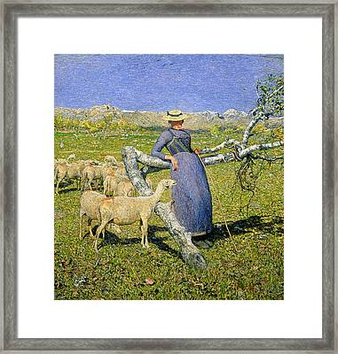 Afternoon In The Alps Framed Print
