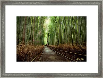 Framed Print featuring the photograph Afternoon In The Bamboo by Rikk Flohr