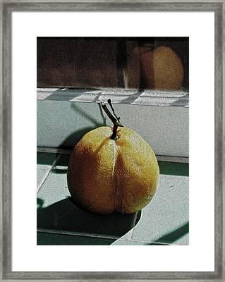 Afternoon Lemon Framed Print