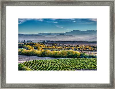 Afternoon Light In The Salinas Valley Framed Print by Bill Roberts