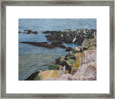 Afternoon On Barnegat Bay  Framed Print