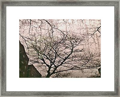 Afternoon Rain Framed Print by Sarah Loft