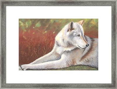 Afternoon Repose Framed Print by Janet Biondi
