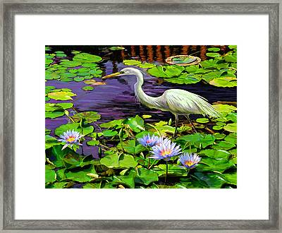 Afternoon Snack Framed Print by David  Van Hulst
