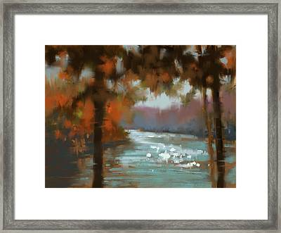 Afternoon Sparkle Framed Print by Donna Shortt