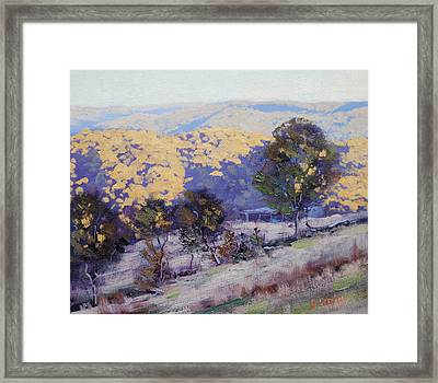 Afternoon  Sunlight Turon Australia Framed Print