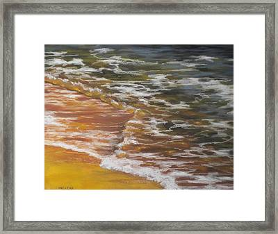 Afternoon Swim Framed Print by Cheri Halsema