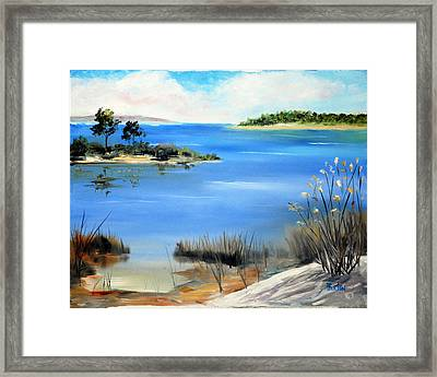 Afternoon Water Framed Print by Phil Burton