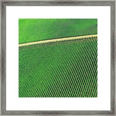 Ag Road Framed Print