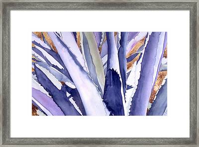 Agave 4 Framed Print by Eunice Olson