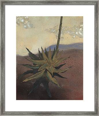 Agave Framed Print by Fred Chuang