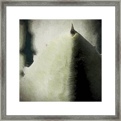 Agave Impression Four Framed Print