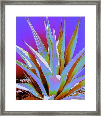 Agave Spirit Framed Print