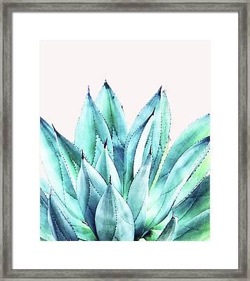 Agave Vibe Framed Print