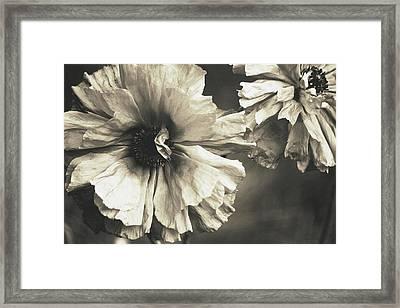 Age Of Change... Framed Print by The Art Of Marilyn Ridoutt-Greene