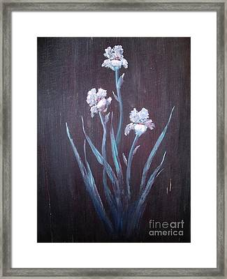 Aged Iris Framed Print by The Stone Age