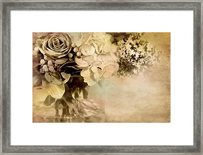 Ageless Framed Print by Diana Angstadt