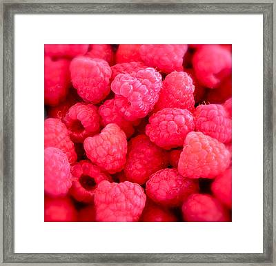 Agenda For Today ... Raspberry Jam Framed Print
