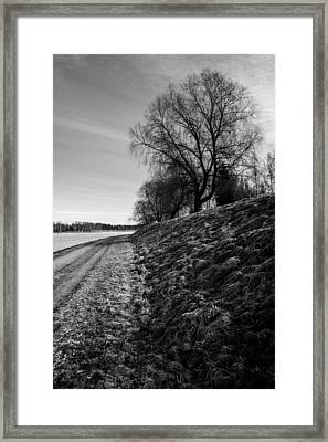 Ages Framed Print by Matti Ollikainen