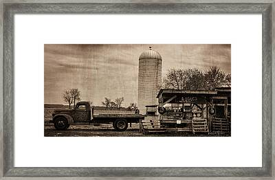 Aggie's Farm Stand Framed Print by Louise Reeves