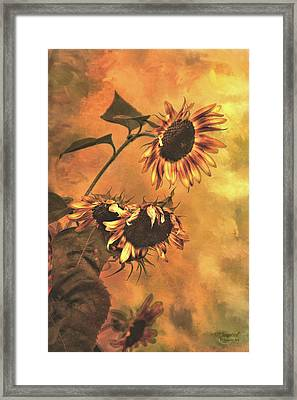 Agony And Ecstasy Framed Print by Theresa Campbell