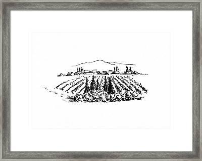 Agricultural Landscape Framed Print by Masha Batkova