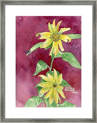 Framed Print featuring the painting Ah Sunflowers by Andrew Gillette