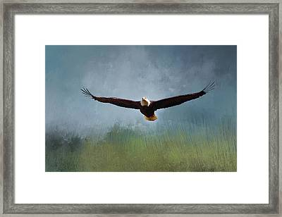 Ahead Of The Storm Framed Print