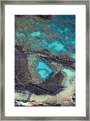 Ahihi Kinau Natural Preserve Framed Print by Ron Dahlquist - Printscapes