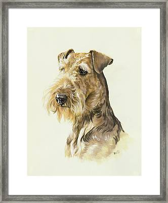 Airedale Framed Print by Barbara Keith