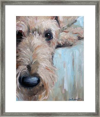 Airedale Blues Framed Print by Mary Sparrow
