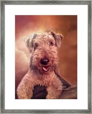 Airedale Framed Print