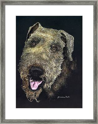 Airedale Terrier Portrait Framed Print by Jessica Kale
