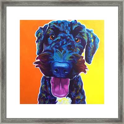 Airedoodle - Fletcher Framed Print